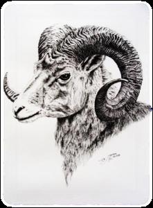Ram C.G. Todita